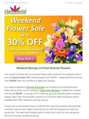 There's Still Time - Up to 30% Off Summer Flowers Sale: Ends Sunday