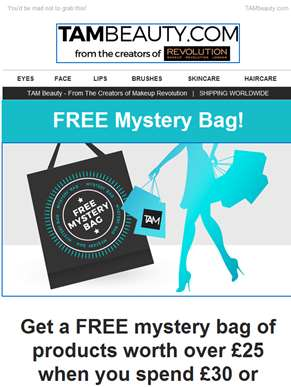 FREE Mystery Bag and SALE ENDING SOON