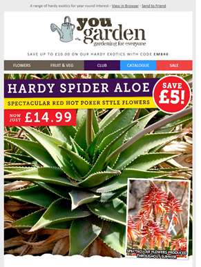 Save Up To £10 On Hardy Exotics...