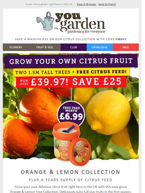 SAVE £25 On Orange And Lemon Tree Collection