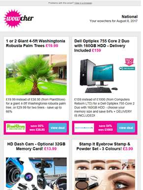 Giant Palm Tree £19.99 | Dell Optilex & Monitor £159 | HD Dash Cam £13.99 | Eyebrow Stamp & Powder S