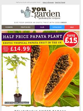 Give Your Garden An Exotic Twist...