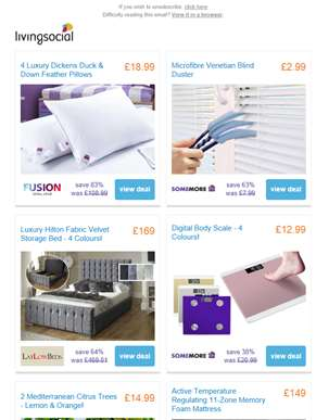 4 Duck Feather Pillows £18.99 | Multi-Head Venetian Blind Cleaner £2.99 | Hilton Upholstered Storage