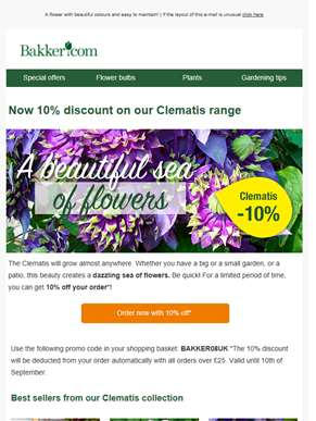 Now 10% discount on our Clematis