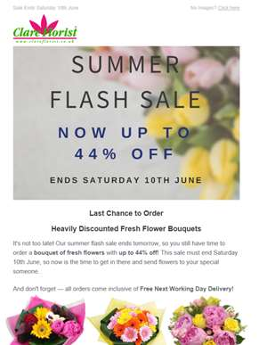 Last Chance! Up to 44% Off Fresh Flowers in our Summer Flash Sale