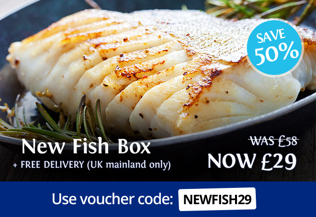 New Fish Box